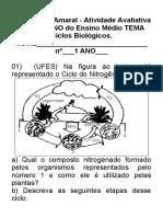 1 ano atividade sobre ciclobiogeoquimico efeito estufa.doc CAIO
