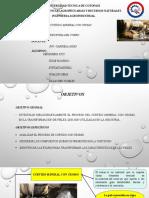 CURTIDO EN CROMO.pptx