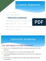 1.2. Valoración ambiental
