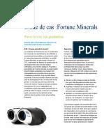 ca-fr-FA-etude-de-cas-fortune-minerals.pdf