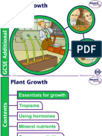 10. Plant Growth.ppt