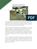 La agricultura de la Cultura Paracas