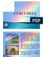 CURCUBEUL-DARIA-RAZVAN-ANDU
