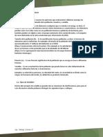 01 - Fundamentos.pdf