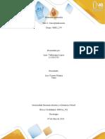 Fase 3Conceptualización_LinaMarcelaValderramLópez_Grupo40002_574