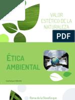 Valor estetico de la naturaleza (1).pdf
