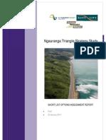 Ngauranga Triangle Strategy Study Short Options Report