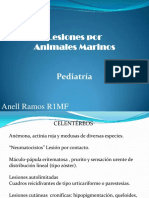 animalesmarinos-130321174625-phpapp01