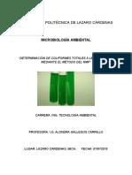 Práctica 1 - Determinación de Coliformes - Microbiología Ambiental (2).docx