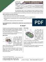 GC0104 - El texto descriptivo - 1roS.pdf
