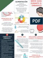 TRIPTICO GUIA DEL EMBARAZO.pdf