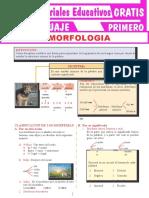 Morfología-Para-Primer-Grado-de-Secundaria