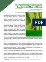 122. Manejo Agroecologico del Gusano Cogollero del Maiz en Mexico