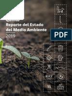 REMA-2019-comprimido.pdf