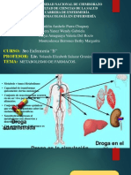 Diapositivas.grupoD.Metabolismo.Franklin.Parra.pdf