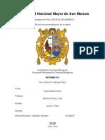 informe 04 PLATELMINTOS.docx