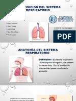 EXPOSICION_DEL_SISTEMA_RESPIRATORIO (wecompress.com).pptx