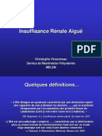 IRA2.pdf