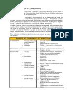 BASES NEUROLÓGICAS DE LA INTELIGENCIA.docx