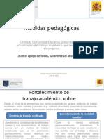 1595261393676_medidaspedagogicas5