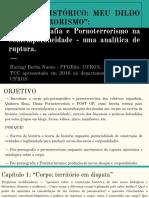 """""""CORPO HISTÓRICO_ MEU DILDO GOZA TERRORISMO""""_ Pós-pornografia e Pornoterrorismo na contemporaneidade - uma analítica de ruptura. (1)"""