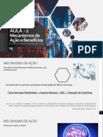 AULA  - 2.pdf