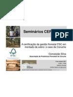 Seminário de Conceicao Silva