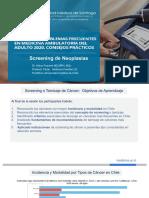 19 SCREENING CA.pdf