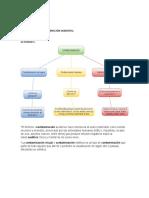 BIOLOGÍA TALLER CONTAMINACIÓN AMBIENTAL.docx