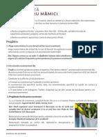 Ghid practic - Flori pentru mămici.pdf