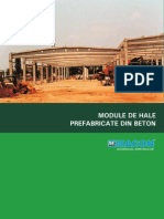 Catalog Hale Prefabricate Din b.a.