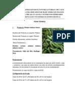 Ficha técnica - plantain, plátano macho para Denis.pdf