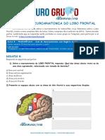 08 Lobo Frontal - NeuroGrupo