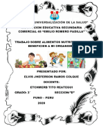 ELVIS RAMOS COLQUE.pdf