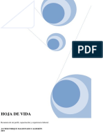 JAVIER MALDONADO.pdf