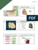 Ativ_Eletrica_Cardiaca.pdf
