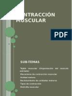 298976100-Contraccion-Muscular.pdf
