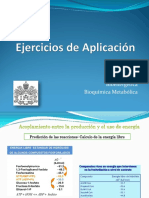 Preset_Ejercicios de Aplicación_EB.pdf
