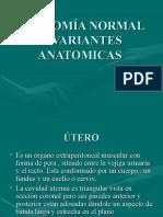 58265664-ANATOMIA-NORMAL-Y-VARIANTES-ANATOMICAS