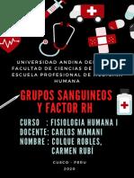 Determinacion de Grupo Sanguineo - Colque Robles - Viernes 21-23hrs (1)