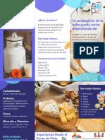 folleto de leche y sus derivados