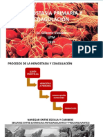 23. Hemostasia Primaria y Coagulación