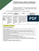 El_ciclo_evolutivo_de_la_familia.doc