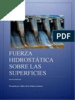 FH superficies