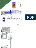 Formular Grup Tinta - ANTONOAIE MARIAN