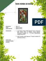 C2 BEGONIA ACETOSA.pdf