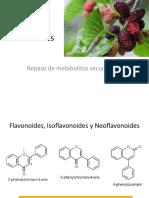 -repasodemetabolitossecundarios1pp02