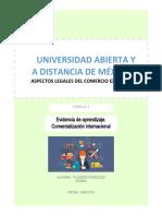 IACE_U1_EA1_IVG