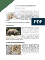 LOS ANIMALES EN MAYOR PELIGRO DE EXTINCIÓN