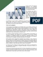 Los pingüinos.docx